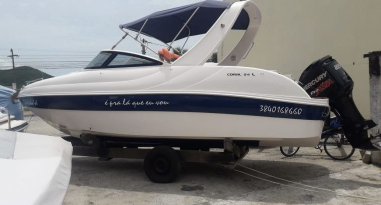 Coral 24 Luxo 2013