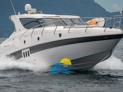 Coral 43 Full 2014
